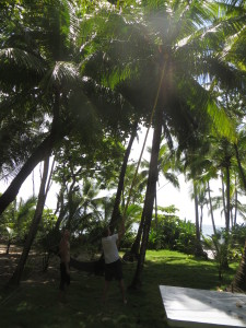 Knocking down a coconut with a bamboo pole.